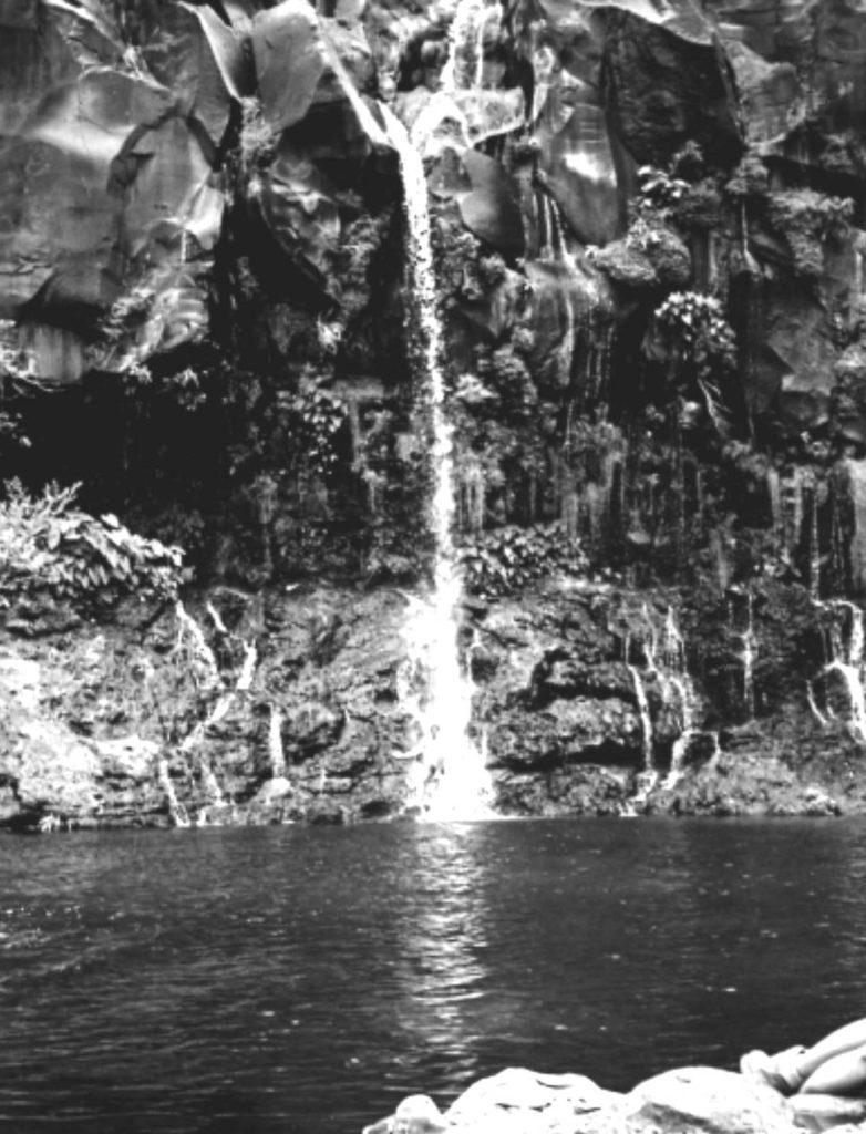 2002 stage Ile de la Reunion Bruno sous la cascade